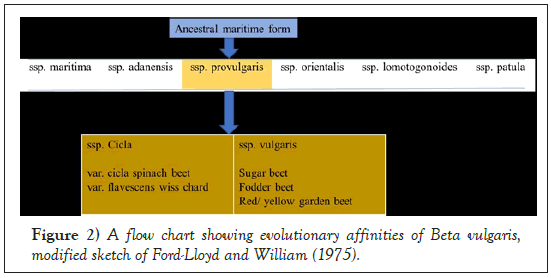 Agricultural-Biological-affinities