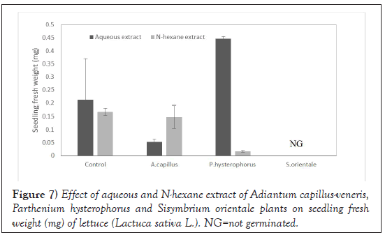 Agricultural-Biological-lettuce